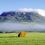 Camping in Lejweleputswa