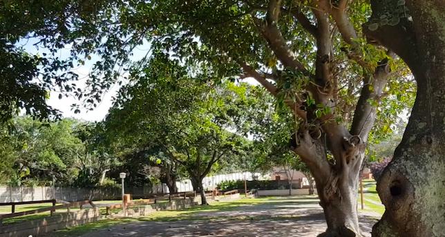 Voetplaat Park