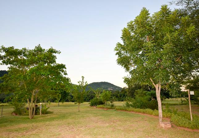 Kiaat Caravan Park