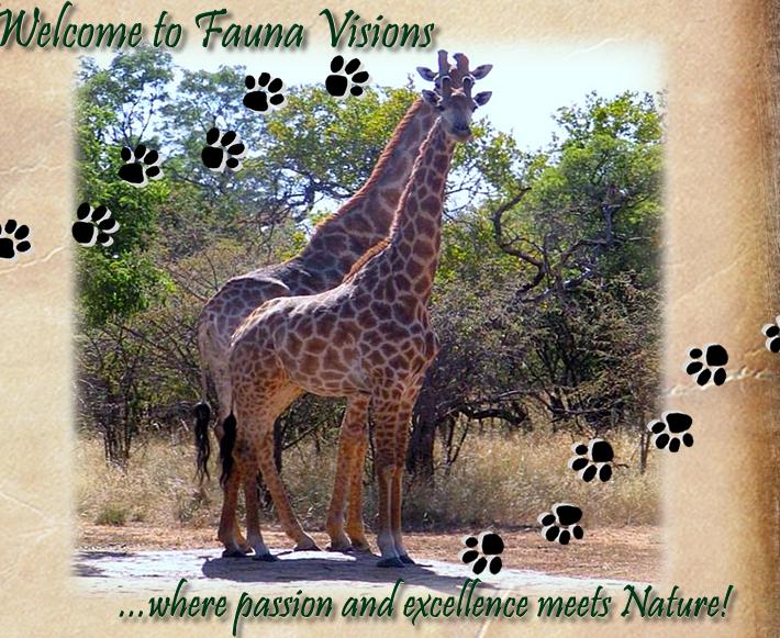 Fauna Visions Hartbees Nature Reserve