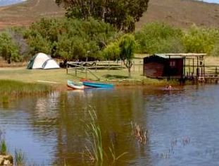 Night Sky Caravan Park - SA Campsites