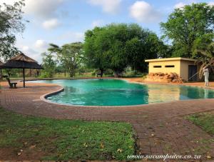 swimming pool at shingwedzi campsite