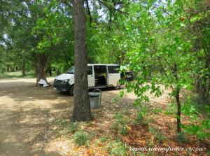 campsite beneath beautiful trees