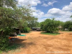 camp site under trees at Satara