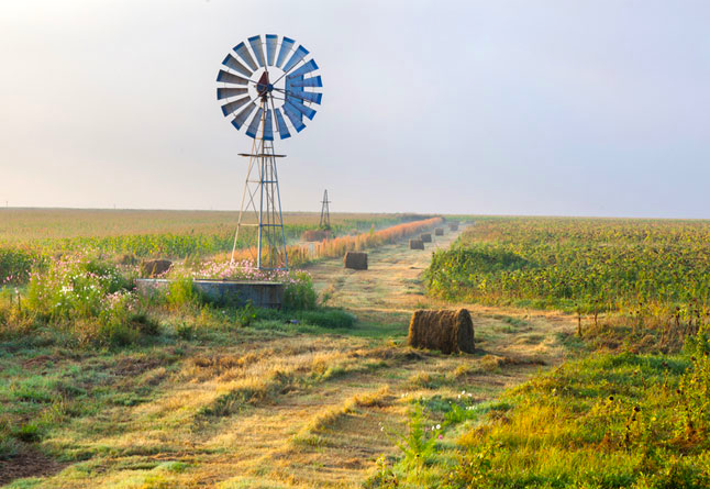 4x4 Campsites in the Free State