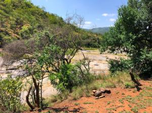 Dry river bed at Doornkraal campsite