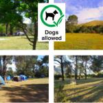 Greyton Eco Camp